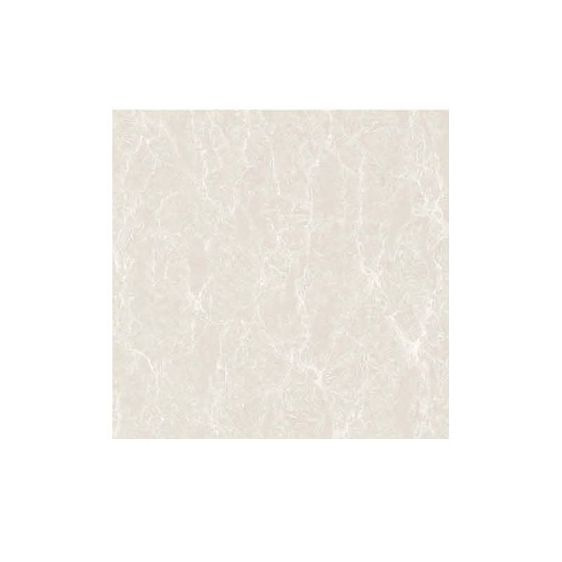 Beroia Polished Porcelain EB-6121